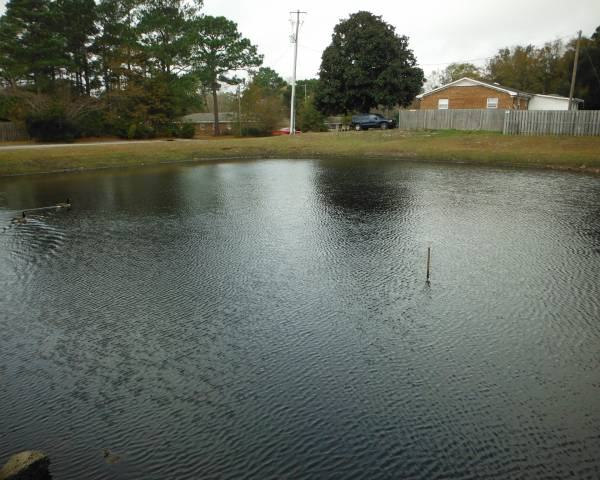 Brewster Place Pond After