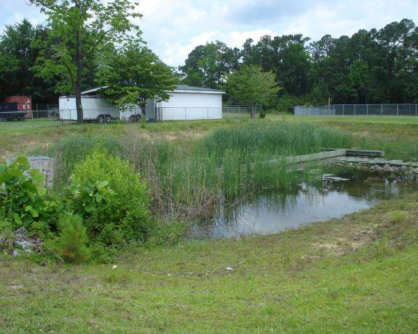 Wrighstboro UMC Pond Before