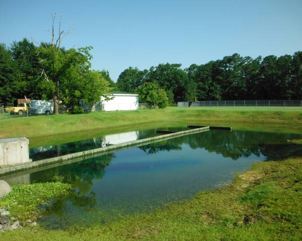 Wrighstboro UMC Pond After
