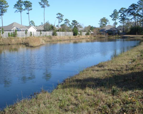 Ashley Park Pond
