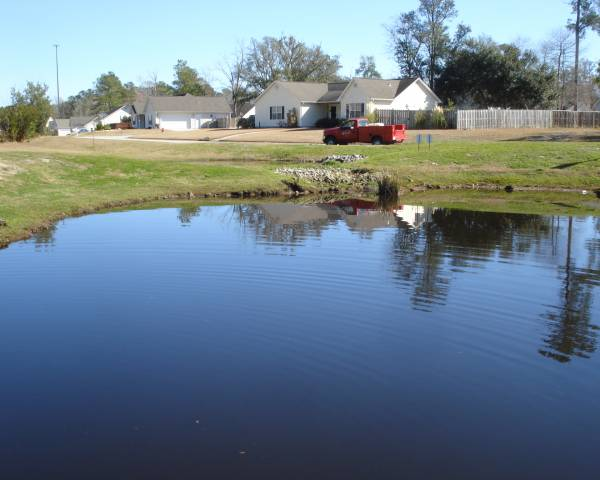 Linden Ridge Pond