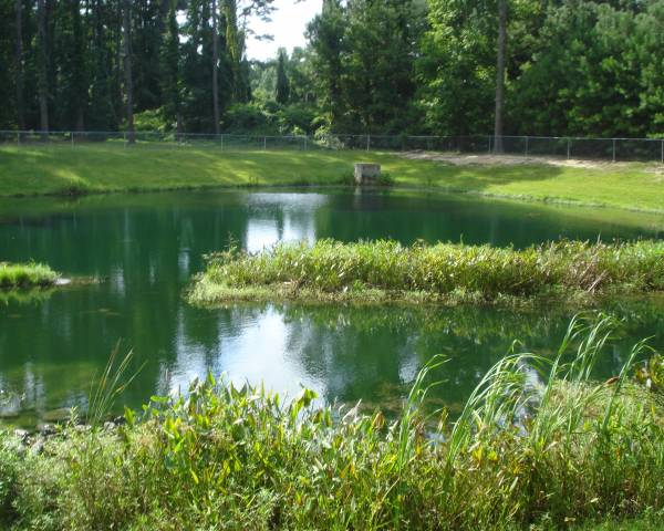 Union Baptist Pond
