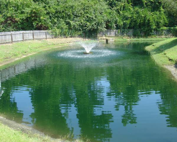 Wrightsville Place Pond